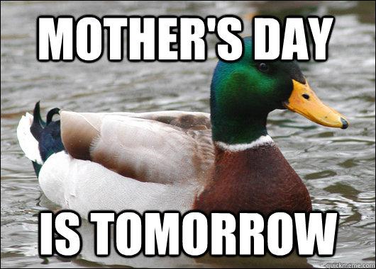 Mother's Day Is tomorrow - Mother's Day Is tomorrow  Actual Advice Mallard
