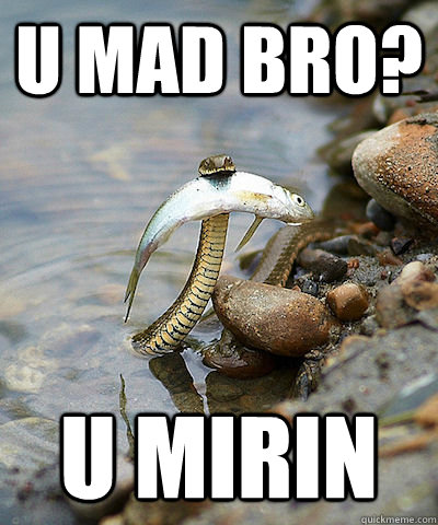 u mad bro? u mirin  Fishing Snake