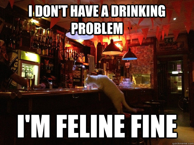 I don't have a drinking problem I'm feline fine