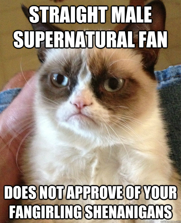 straight male supernatural fan  does not approve of your fangirling shenanigans - straight male supernatural fan  does not approve of your fangirling shenanigans  Grumpy Cat