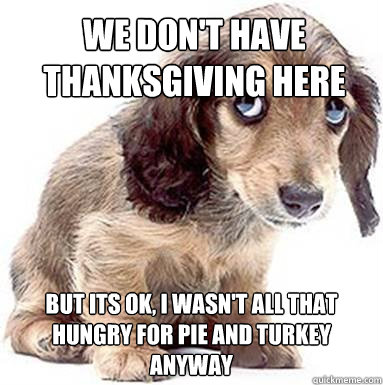 We don't have thanksgiving here But its OK, I wasn't all that hungry for pie and turkey anyway