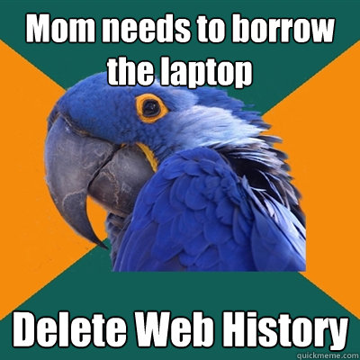 Mom needs to borrow the laptop Delete Web History - Mom needs to borrow the laptop Delete Web History  Paranoid Parrot