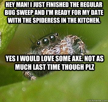 032c3610f3b741e684a3de7de44a1d707e8219c6d99d82410b2fd6f1f4f1d8e2 misunderstood spider memes quickmeme,Misunderstood Spider Meme