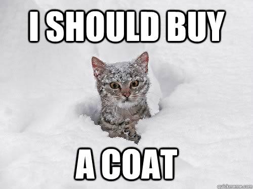 I should buy a coat - I should buy a coat  Misc