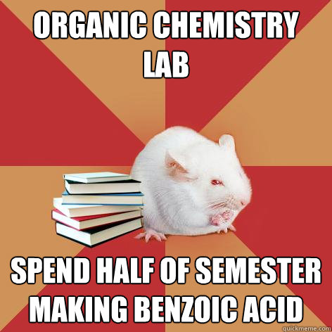 ORGANIC CHEMISTRY LAB SPEND HALF OF SEMESTER MAKING BENZOIC ACID - ORGANIC CHEMISTRY LAB SPEND HALF OF SEMESTER MAKING BENZOIC ACID  Science Major Mouse