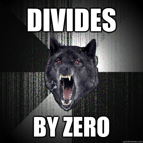 divides by zero - divides by zero  Insanity Wolf
