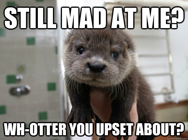 0367a8b1aa2b2dc643c5106c8c966ae0af3b2d18097f62d99d51e0fc8a2ee23f still mad at me? wh otter you upset about? misc quickmeme,Still Mad Meme