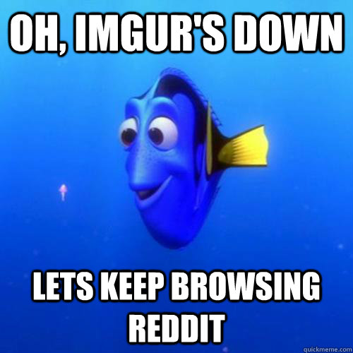 Oh, Imgur's down lets keep browsing reddit - Oh, Imgur's down lets keep browsing reddit  dory