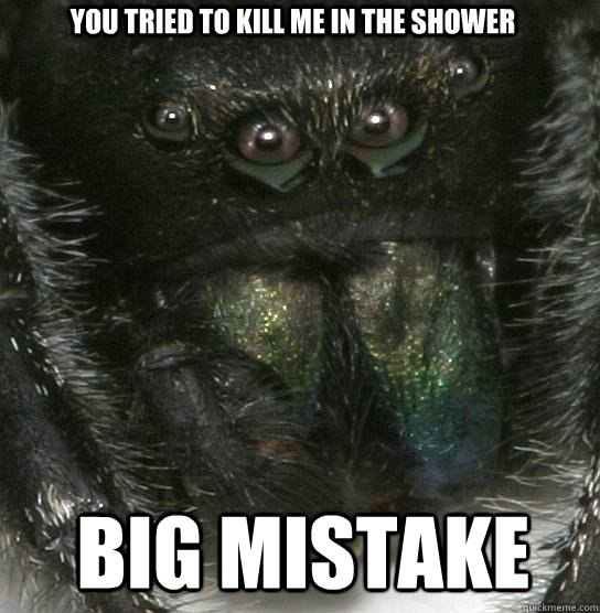 You tried to kill me in the shower big mistake - You tried to kill me in the shower big mistake  Vengeful Spider