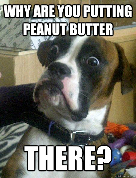 why are you putting peanut butter there? - why are you putting peanut butter there?  Baffled boxer