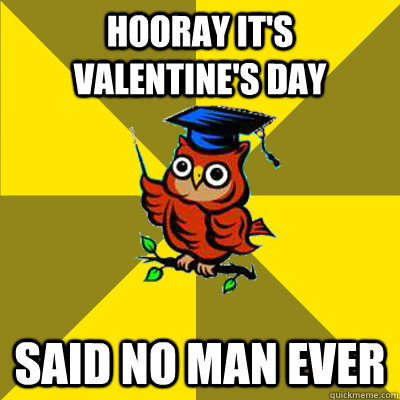 Hooray it's valentine's day said no man ever - Hooray it's valentine's day said no man ever  Observational Owl