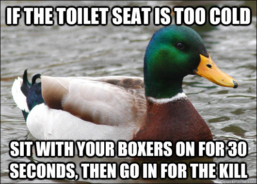 If the toilet seat is too cold sit with your boxers on for 30 seconds, then go in for the kill - If the toilet seat is too cold sit with your boxers on for 30 seconds, then go in for the kill  Actual Advice Mallard