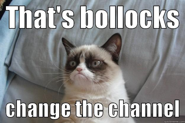 That's bollocks change the channel Grumpy cat -  THAT'S BOLLOCKS    CHANGE THE CHANNEL Grumpy Cat