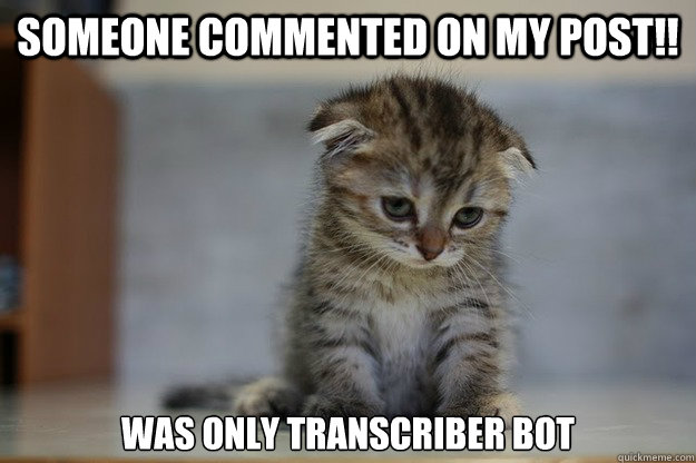 someone commented on my post!! was only transcriber bot - someone commented on my post!! was only transcriber bot  Sad Kitten