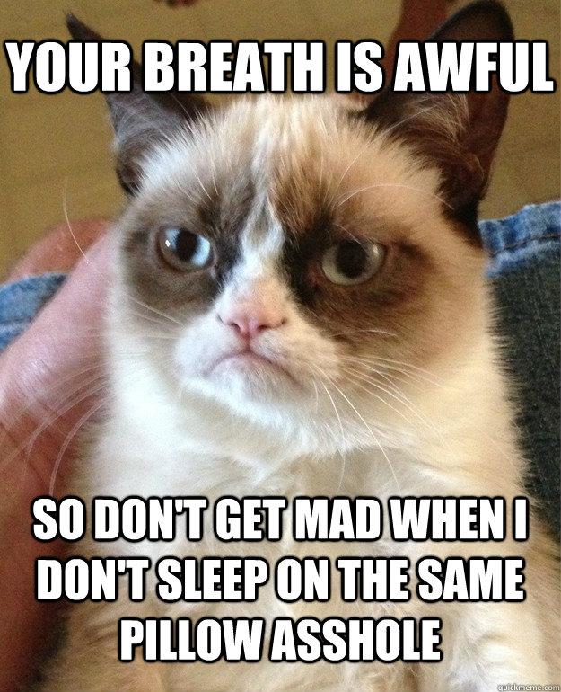 03bdb2a0e8b55e4719ab498becd43451d8f1b907948e46e3c17cf1641c20dfac grumpy cat memes quickmeme