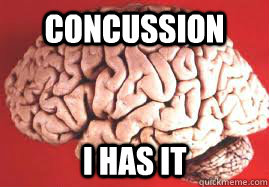 Concussion I Has it  NHL Concussion