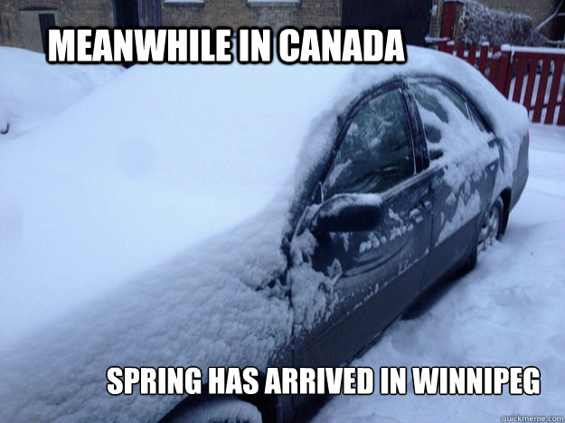 Meanwhile in Canada Spring has arrived in Winnipeg