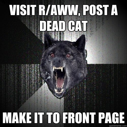 visit r/aww, post a dead cat make it to front page - visit r/aww, post a dead cat make it to front page  Insanity Wolf