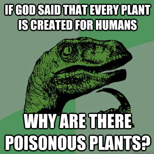 If God said that every plant is created for humans Why are there poisonous plants? - If God said that every plant is created for humans Why are there poisonous plants?  Philosoraptor