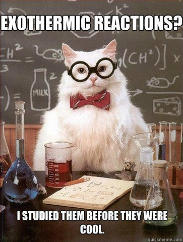 Exothermic Reactions? I studied them before they were cool.  Chemistry Cat