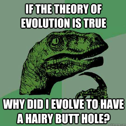If the theory of evolution is true Why did I evolve to have a hairy butt hole? - If the theory of evolution is true Why did I evolve to have a hairy butt hole?  Philosoraptor