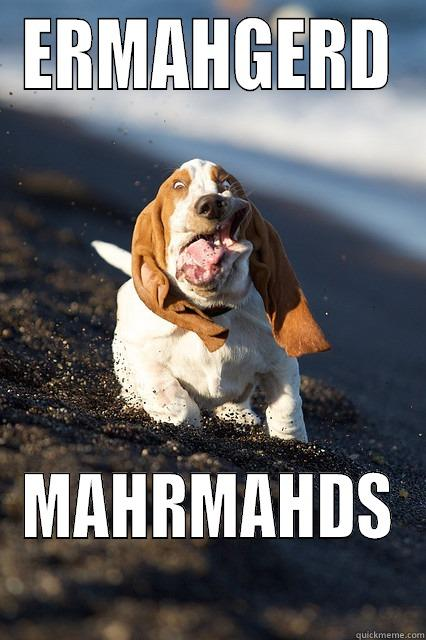 Derp dog goes to the beach - ERMAHGERD MAHRMAHDS Misc