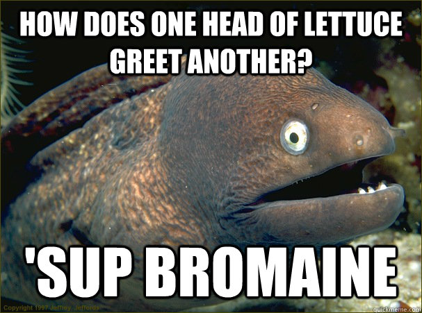 How does one head of lettuce greet another? 'sup Bromaine - How does one head of lettuce greet another? 'sup Bromaine  Bad Joke Eel