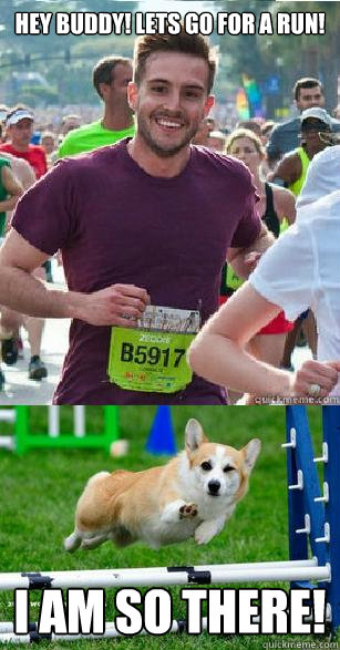 Hey Buddy! Lets go for a run! I am so there! - Hey Buddy! Lets go for a run! I am so there!  Ridiculous Attractiveness