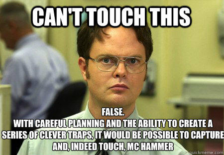 can't touch this False. With careful planning and the ability to create a series of clever traps, it would be possible to capture and, indeed touch, MC Hammer