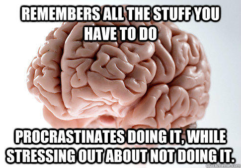 Remembers all the stuff you have to do Procrastinates doing it, while stressing out about not doing it. - Remembers all the stuff you have to do Procrastinates doing it, while stressing out about not doing it.  Scumbag Brain