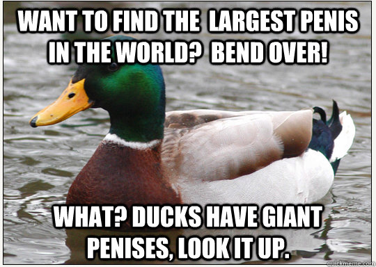 Want to find the  largest penis in the world?  bend over! what? ducks have giant penises, look it up.
