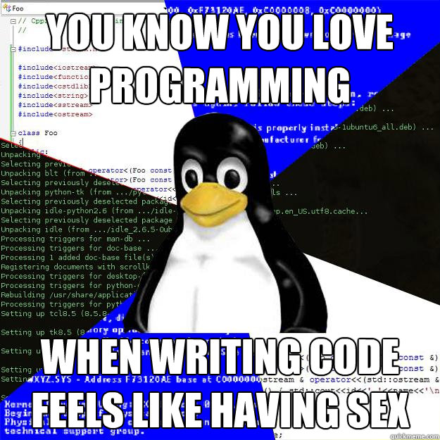 You know you love programming when writing code feels like having sex