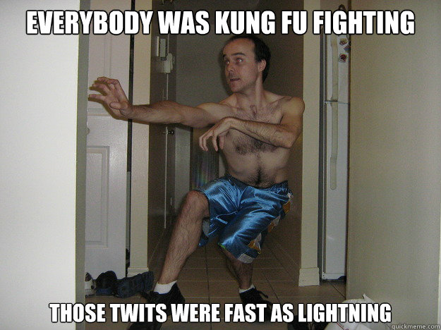 Everybody was Kung Fu Fighting Those Twits were fast as lightning