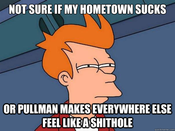Not sure if my hometown sucks Or Pullman makes everywhere else feel like a shithole   - Not sure if my hometown sucks Or Pullman makes everywhere else feel like a shithole    Futurama Fry