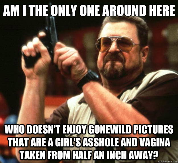 Am I the only one around here who doesn't enjoy gonewild pictures that are a girl's asshole and vagina taken from half an inch away? - Am I the only one around here who doesn't enjoy gonewild pictures that are a girl's asshole and vagina taken from half an inch away?  Big Lebowski