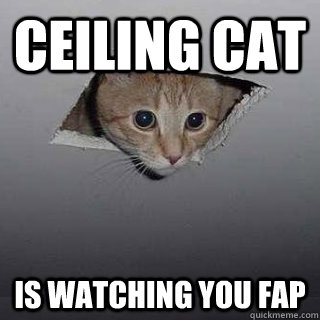 ceiling cat is watching you fap