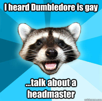 I heard Dumbledore is gay ...talk about a headmaster - I heard Dumbledore is gay ...talk about a headmaster  Lame Pun Coon