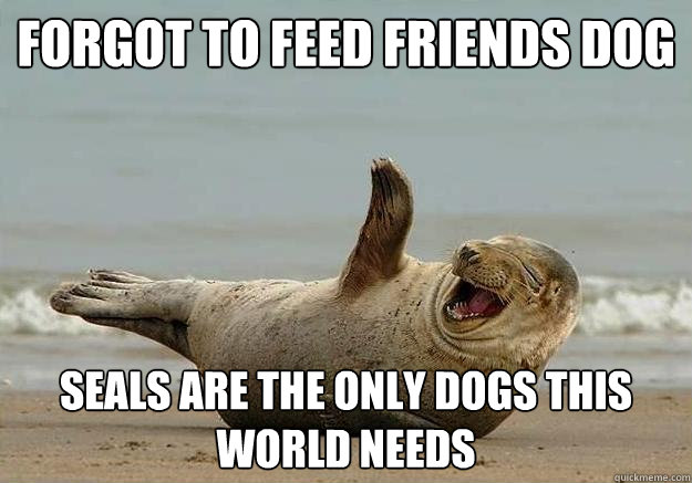 Forgot to feed friends dog Seals are the only dogs this world needs