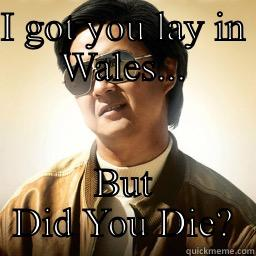 I GOT YOU LAY IN WALES... BUT DID YOU DIE? Mr Chow