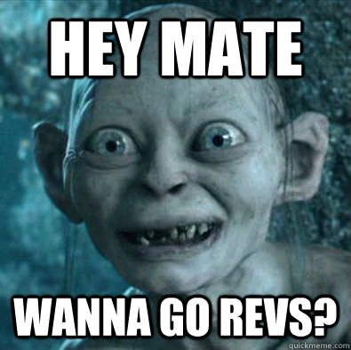 HEY MATE WANNA GO REVS?