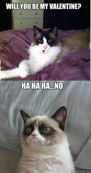 Will You Be My Valentine Ha Ha Hano Grumpy Cat Nude Quickmeme