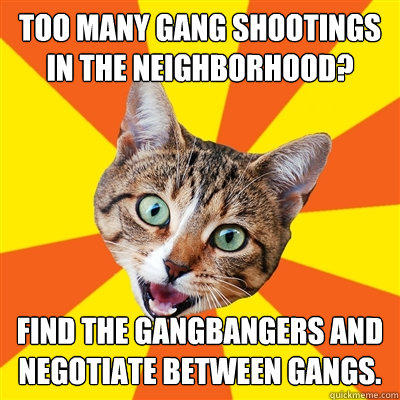 Too many gang shootings in the neighborhood? Find the gangbangers and negotiate between gangs.  Bad Advice Cat