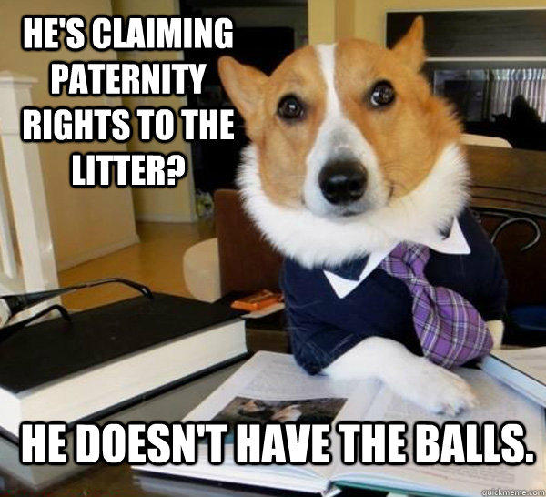 He's claiming paternity rights to the litter? He doesn't have the balls. - He's claiming paternity rights to the litter? He doesn't have the balls.  Lawyer Dog