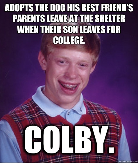 Adopts the dog his best friend's parents leave at the shelter when their son leaves for college. Colby.   - Adopts the dog his best friend's parents leave at the shelter when their son leaves for college. Colby.    Bad Luck Brian