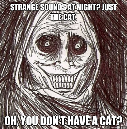 Strange sounds at night? Just the cat. Oh, you don't have a cat?