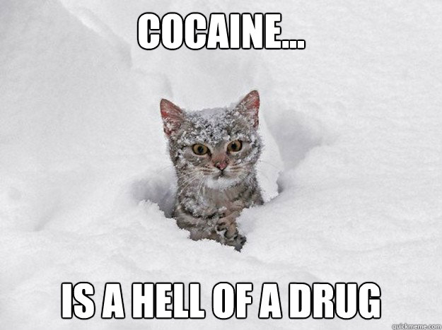 Cocaine... Is a hell of a drug