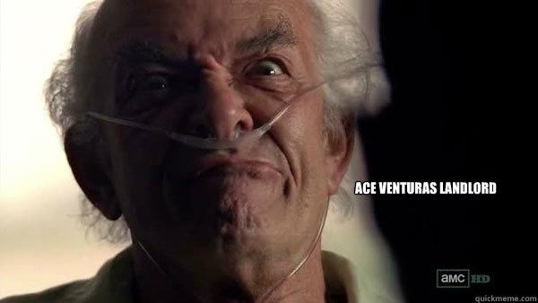 Ace Venturas landlord