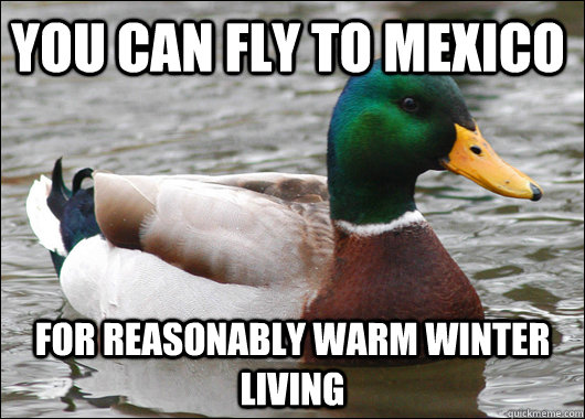 You can fly to Mexico For reasonably warm winter living - You can fly to Mexico For reasonably warm winter living  Actual Advice Mallard