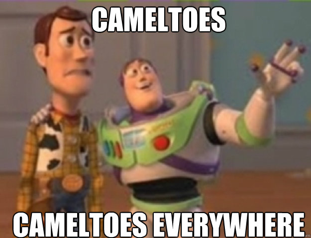 cameltoes cameltoes everywhere
