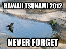Hawaii tsunami 2012 never forget - Hawaii tsunami 2012 never forget  We will never forget Isaac!